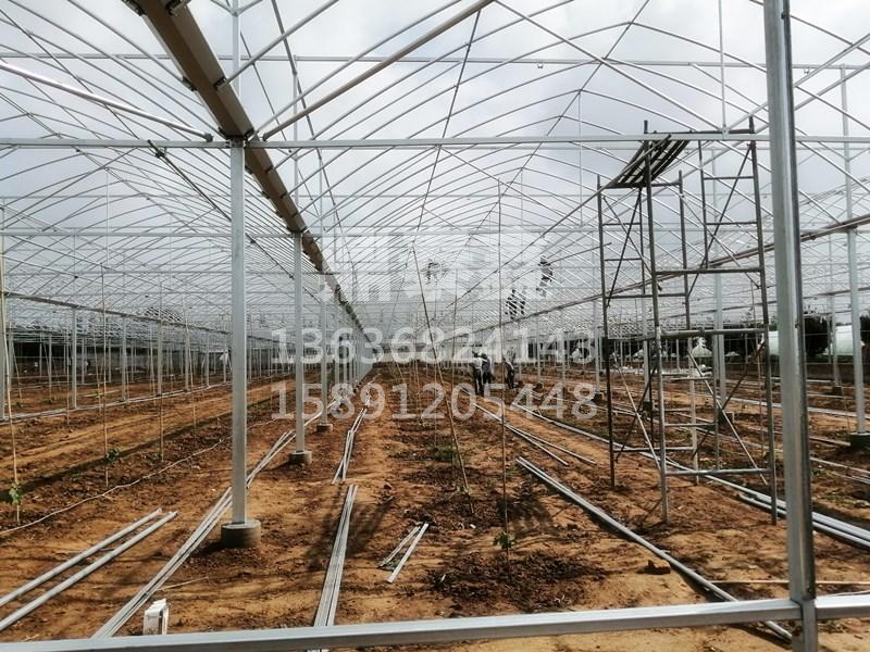 温室大棚骨架结构要求骨架由拱架、...